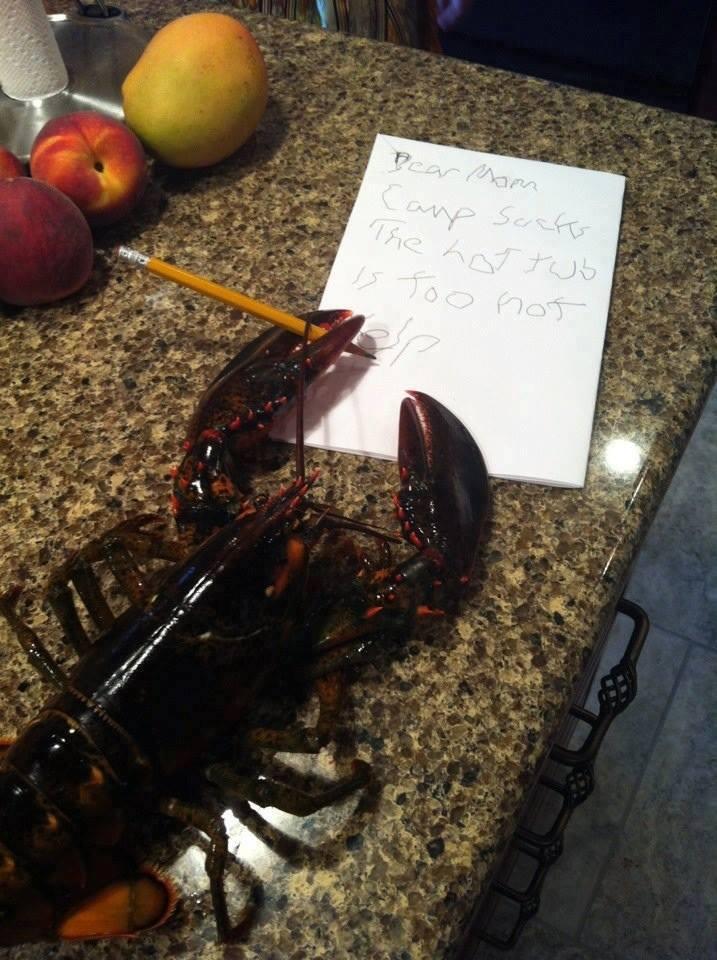 lobster joke