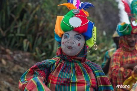 carnaval-2014-2